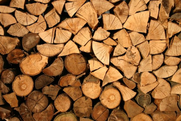 Collecting, chopping and curing firewood in the UK
