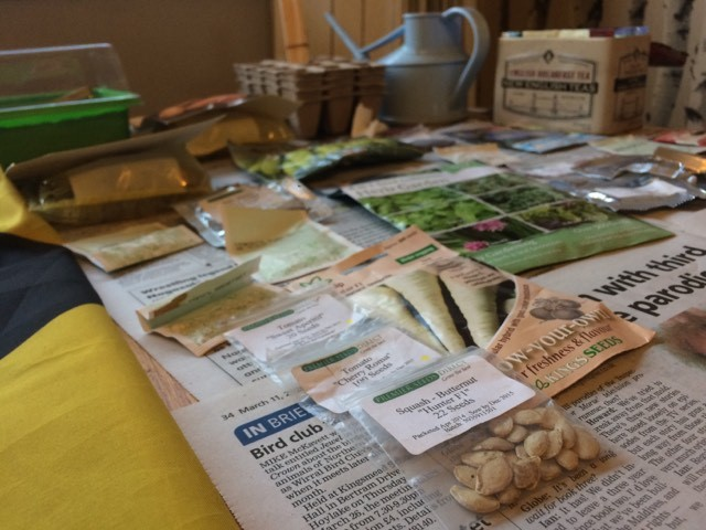 Planting the first seeds of the season, the potential of herbs & what can I use shells for?  Blog post #7